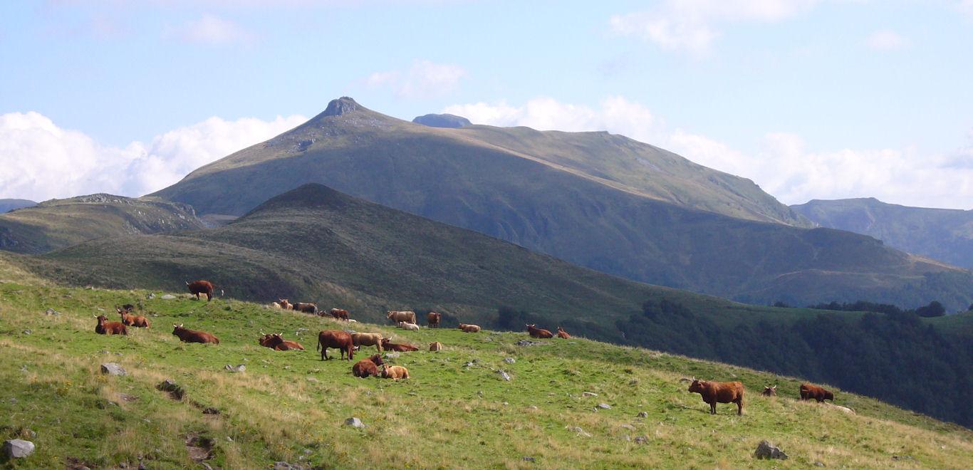 bannière montagnes